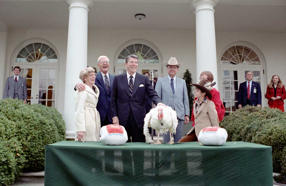 President Reagan receives the Thanksgiving turkey from the National Turkey Federation in 1981. (Photo: Archives/Reagan Presidential Library)