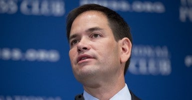 Sen. Marco Rubio, R-Fla. (Photo: Newscom)