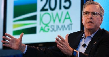 Former Florida Gov. Jeb Bush (Photo: Reuters/Newscom)