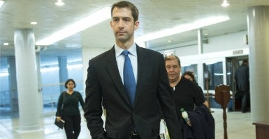 Sen. Tom Cotton. (Photo: Kevin Dietsch/UPI/Newscom)
