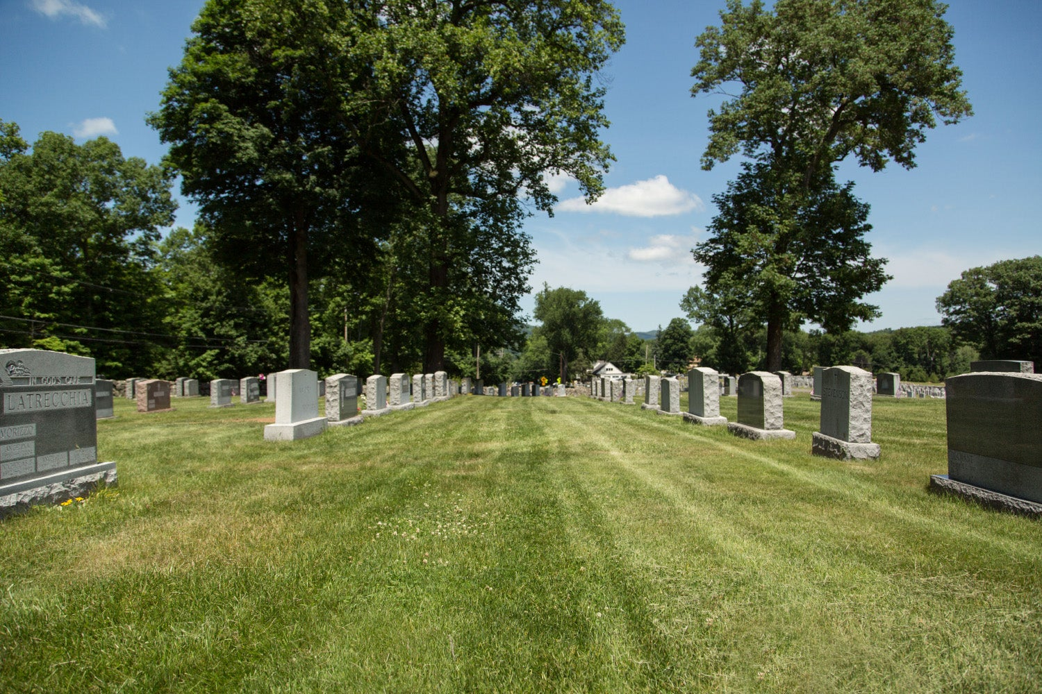 One of the cemeteries owned by the Roman Catholic Archdiocese of Newark. (Photo: Institute for Justice)