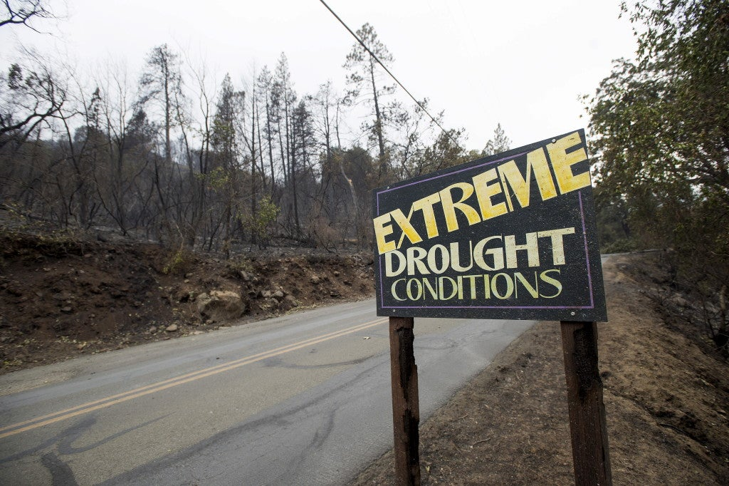 A sign remains among trees that were burned after the Valley Fire ripped through Middleton, California, September 14, 2015. (Photo: REUTERS/Noah Berger/Newscom)