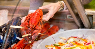 Bill No Steak Lobster Purchases With Food Stamps