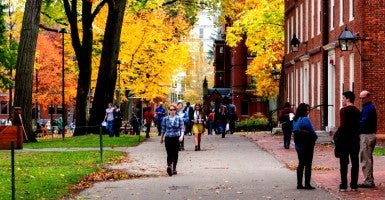 Harvard University campus.  If students really wanted to challenge authority, one would think a good place to start would be by challenging the left-wing ideas that those in authority teach. (Photo: istockphoto)