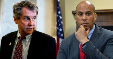 U.S. Sens. Sherrod Brown, D-Ohio, and Cory Booker, D-N.J., are lobbying the Consumer Financial Protection Bureau in a letter that appears to be written by one of the agency's own advisers. (Photos: Tom Williams/CQ Roll Call/Newscom of Brown and Perisha Gates/ZUMA Press/Newscom of Booker)