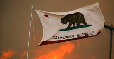 Following Donald Trump's victory in the 2016 presidential election, some groups and individuals are calling for a California secession movement. (Photo: Hayne Palmour Iv/Zuma Press/Newscom)