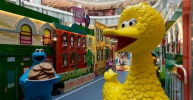 "The Trump administration could eliminate funding to the Corporation for Public Broadcasting, which runs PBS and supports shows like ""Sesame Street."" (Photo: Sipa Asia/Sipa USA/Newscom)"