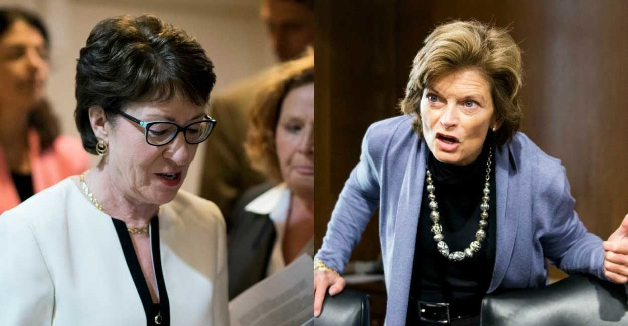 Image result for collins murkowski