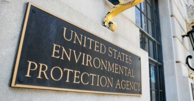 One former EPA official suggested career staff would boycott Trump if he ever visited the agency. (Photo: Kris Tripplaar/Sipa USA/Newscom)