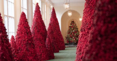 Whitehouse Christmas Decorations.What I Saw During A First Look At The White House Christmas