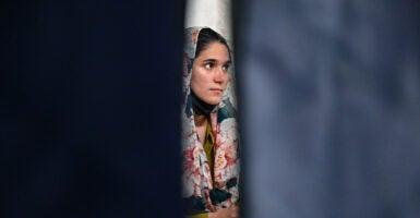 Afghan width=