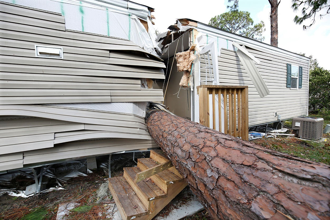 An Uprooted Tree That Slashed A Trailer In Half The Wake Of Hurricane Irma Is Pictured At Mobile Home Park Kissimmee Florida