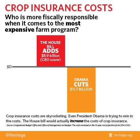 Cropinsurance-4