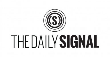 DailySignal_Feature