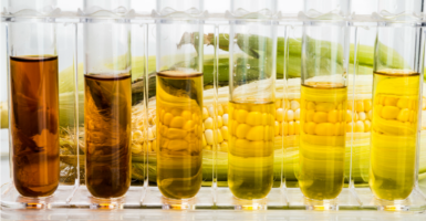 The Renewable Fuel Standard will not bring the U.S. into line with the EPA's greenhouse gas goals, according to the Government Accountability Office. (Photo: iStock Photos)