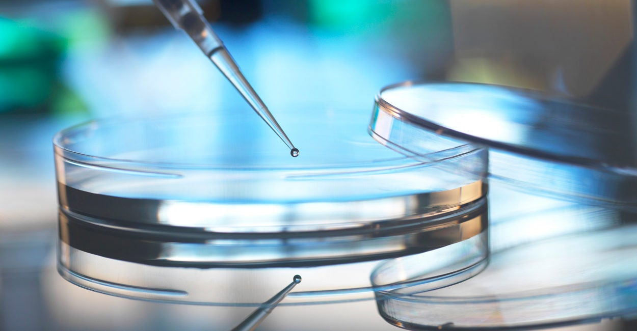 Banning Fetal Tissue Research Isn't Bad for Science. It's an Opportunity.