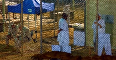 Guantanamo Bay (Photo: Louie Palu/ZUMA Press/Newscom /Edited Daily Signal)