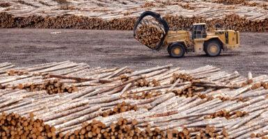 Lumber Canada Tariff