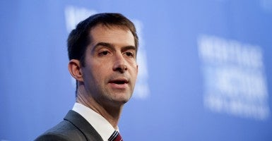 Rep. Tom Cotton, R-Ark. (Photo: Steven Purcell)