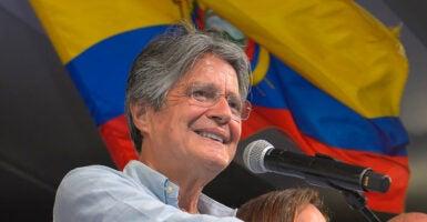 South America Lasso Guillermo