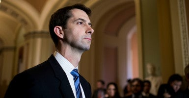 Sen. Tom Cotton, a freshman Republican lawmaker from Arkansas, is one of the chief critics of the Iran nuclear deal. (Photo: Bill Clark/CQ Roll Call/Newscom)
