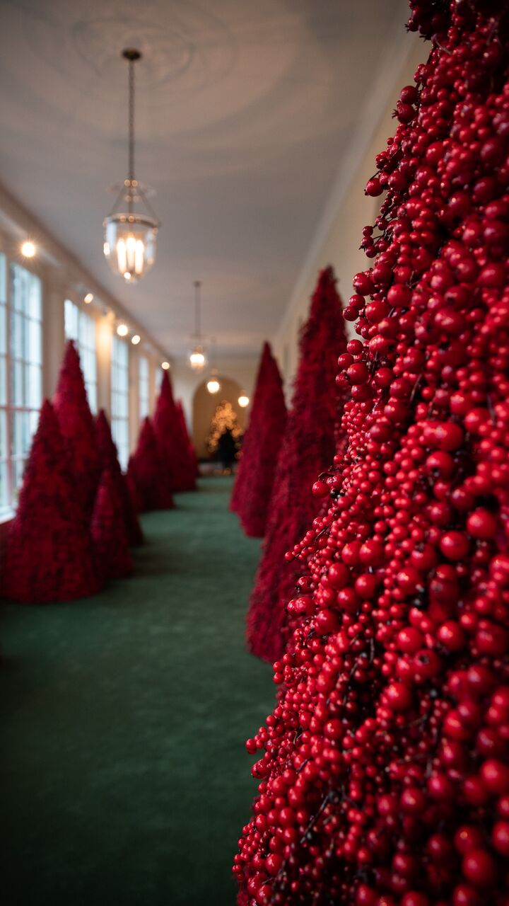 What I Saw During A First Look At The White House Christmas Decorations