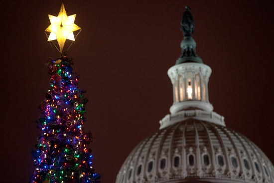 Washington-capitol-Christmas-tree-12-2011