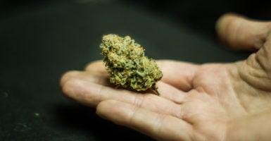 Marijuana pot pushers SAFE Banking Act width=