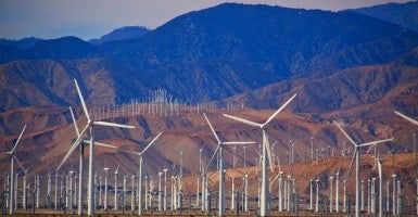 Wind Farm Outside of Palm Springs, California (Photo: Chris Goldberg/ Flickr/ CC BY-NC-ND 2.0)