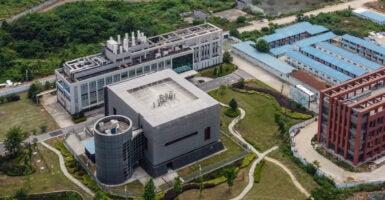 Wuhan Lab Leak Theory width=
