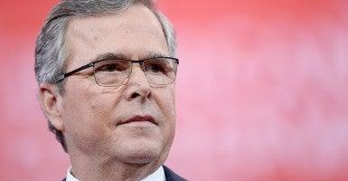Jeb Bush (Photo: Olivier Douliery/Newscom)