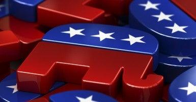Republican elephants, mascot of the Republican Party, USA [Photo via Newscom]