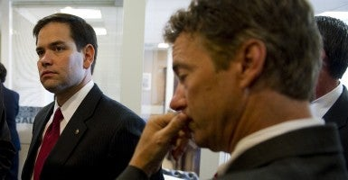 Sen. Marco Rubio, R-Fla., and Sen. Rand Paul, R-Ky. (Photo: Scott J. Ferrell/Congressional Quarterly/Newscom)