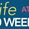fetaldevel20week-teaser