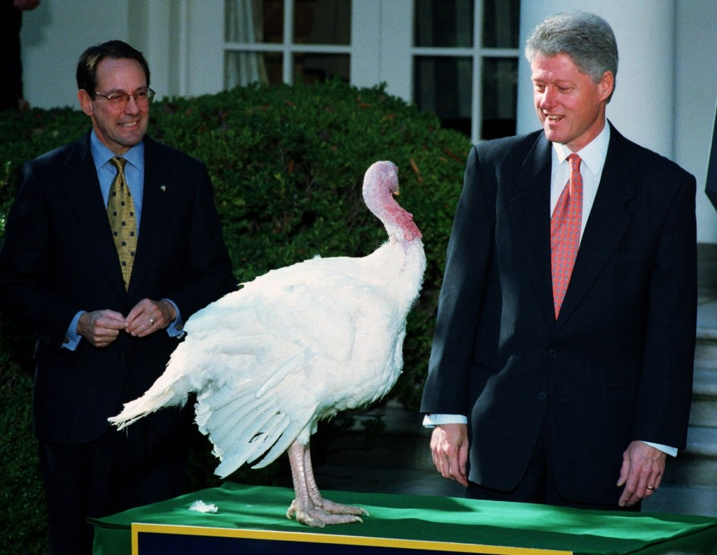 President Bill Clinton eyes the 1998 National Thanksgiving Day Turkey. (Photo: Pete Souza/Newscom)