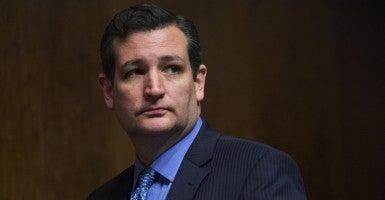 Cruz: 'Concern in Israel' (Photo: Tom Williams/CQ Roll Call)