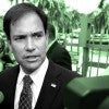 "Americans ""simply don't trust"" politicians to secure the border, Sen. Marco Rubio, R-Fla., says. (Photo illustration by Nicole Rusenko for The Daily Signal; photo: Joe Skipper / EPA / Newscom)"