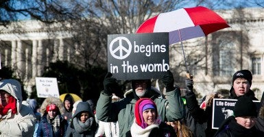 A sign used at the March for Life in Washington, Jan. 22, 2015. (Photo: Alyson Fligg/Sipa USA)