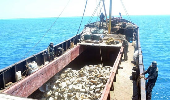 This undated handout photo taken by Philippine navy and released April 11, 2012 by the Department of Foreign Affairs shows Philippine navy troops inspecting a Chinese fishing vessel loaded giant clam shells after it was intercepted off scarborough Shoal which led to a tense standoff between Philippines' warship and Chinese maritime surveillance ships.