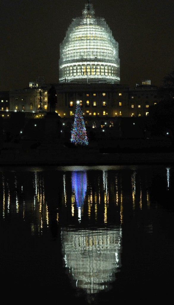 The 2014 Capitol Christmas Tree is a white spruce from the Chippewa National Forest in Cass Lake, Minnesota. (Photo: Xinhua/Bao Dandan)
