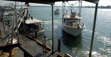 Commercial fisherman in Florida. (Photo: St Petersburg Times/Tampa Bay Times/Newscom)