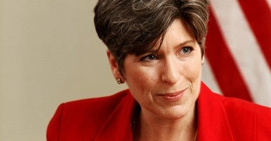 "Sen. Joni Ernst, R-Iowa, appealed to conservatives today in Washington, D.C., telling them Obama's strategy against ISIS ""is not working."" (Photo: Jeff Cook/ZUMA Press/Newscom)"